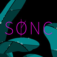 Sønc Logo