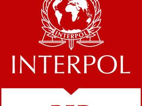 Interpol emitió Alerta Roja para 3 personas acusadas en el caso de la explosión del puerto de Beirut