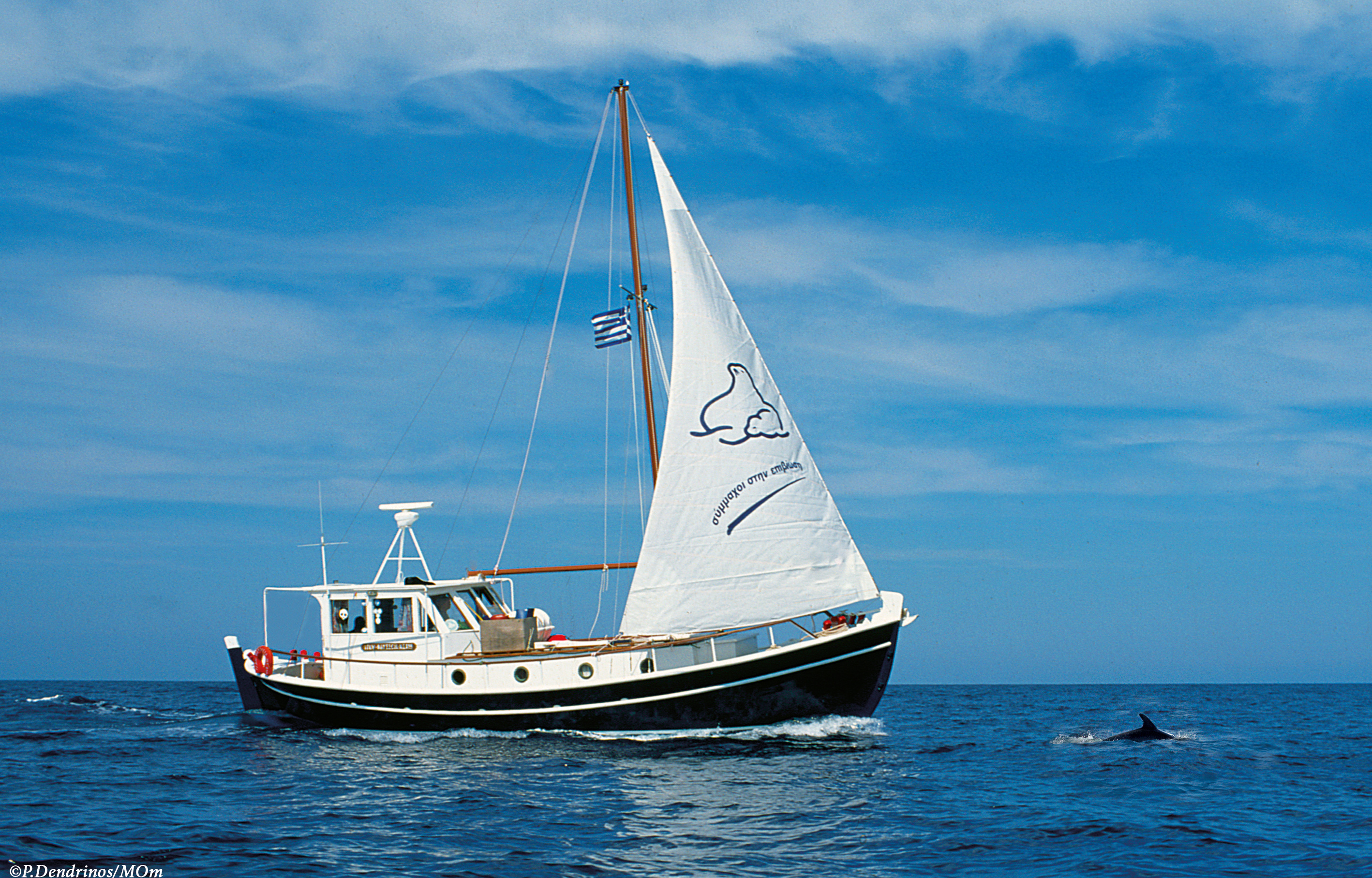 "IFAW ""Odysseia"" MOm's Research Boat"