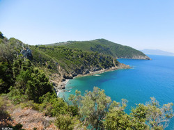 Remote gulfs of Alonissos