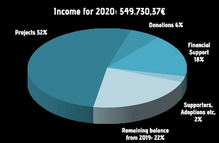 income 2020 EN.png