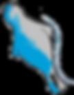 adriatic logo.png