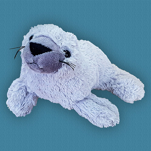 Monk Seal Teddy