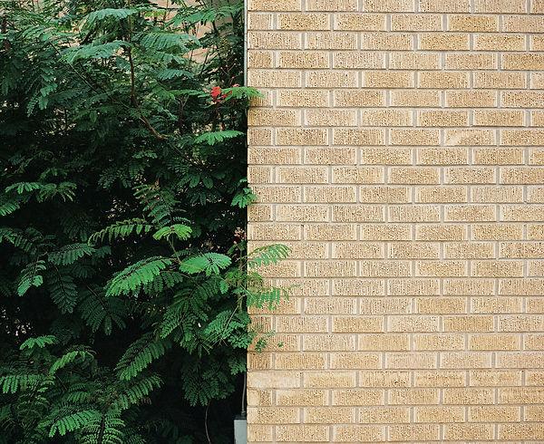 brickwallwithgreen.jpg