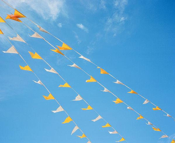 yellowandwhiteflags.jpg