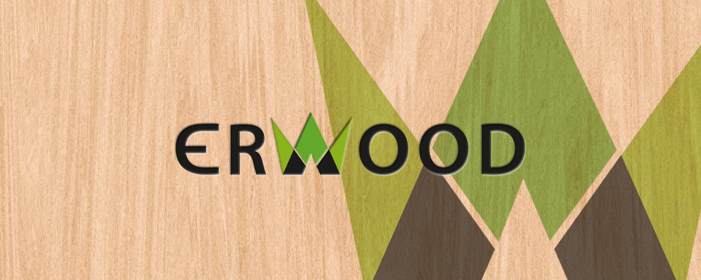 Erwood Oy | logo ja käyntikortti