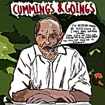 Cummings & Goings