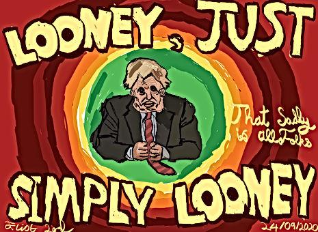 Looney Just Simply Looney