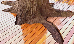 Bespoke decks that add value to your home.
