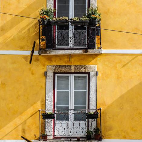 Художники представят свои работы на балконе в период карантина