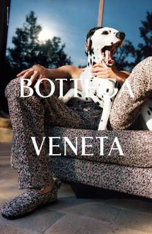 Попугай и далматинец — в новой рекламной кампании Bottega Veneta весна/лето 2021