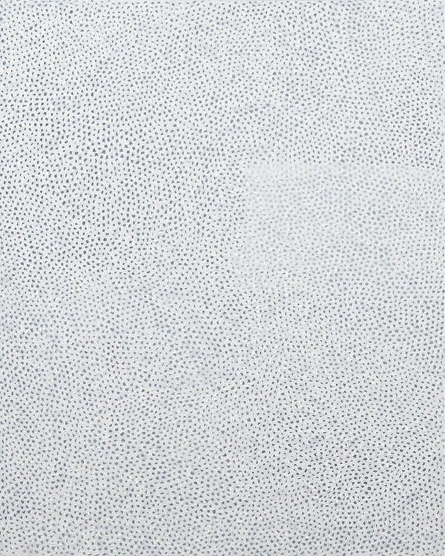«Белый №28», Yayoi Kusama, 1960