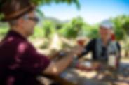 napa wine taisting - LOW.jpg