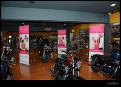 Harley Davidson-2015