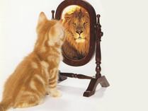 Le deuxième pilier de l'estime de soi: la vision de soi