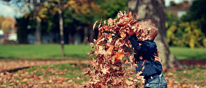 petit garçon qui joue dans les feuilles mortes