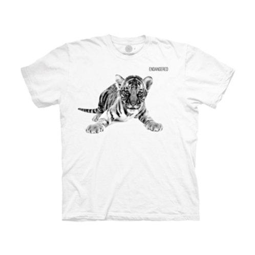 Junger Tiger - Endangered