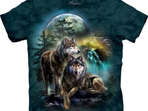 Wolf Aussicht