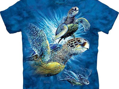 Finde 9 Meeresschildkröten