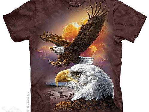 Adler und Wolken