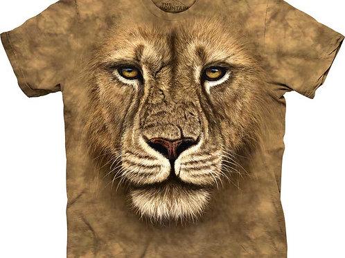 Löwe Krieger
