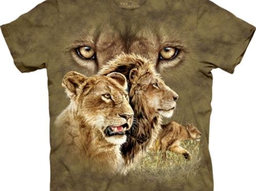 Finde 10 Löwen