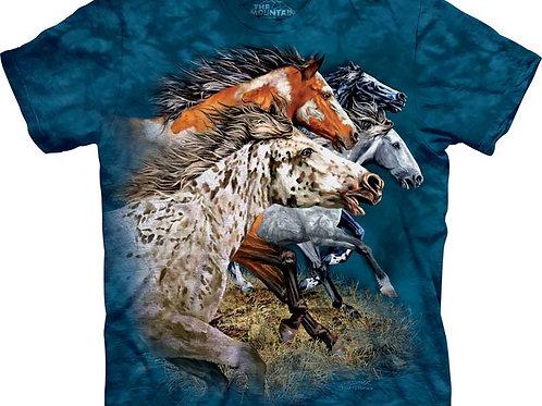 Finde 13 Pferde