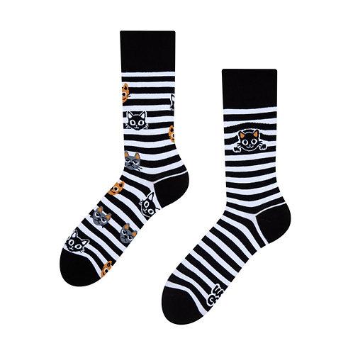 Katzen und Streifen Gute Laune Socken, Erwachsene