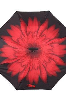Invertierter Regenschirm, Rote Blume