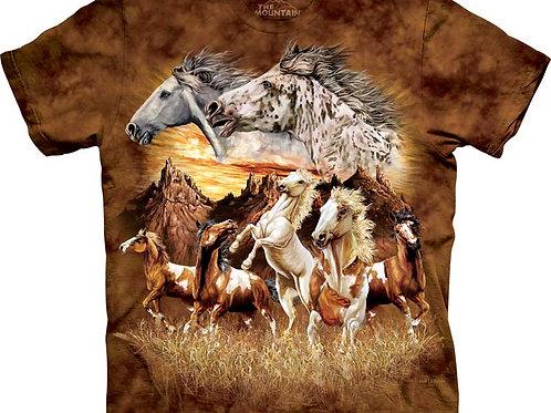 Finde 15 Pferde