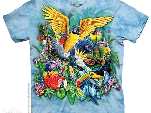 Tropenvögel