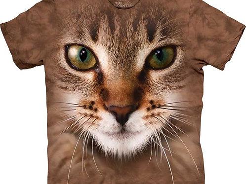 Gestreifte Katze