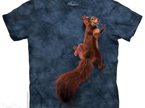 Eichhörnchen mit Friedenszeichen