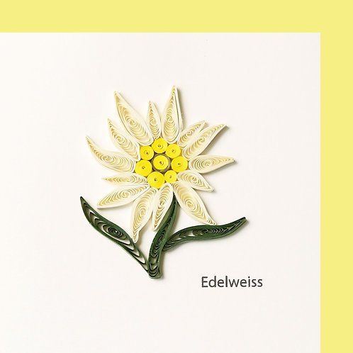 Paper Quilling Karte, Edelweiss