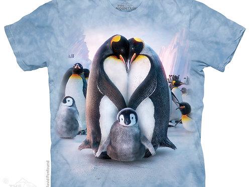 Pinguin Herz
