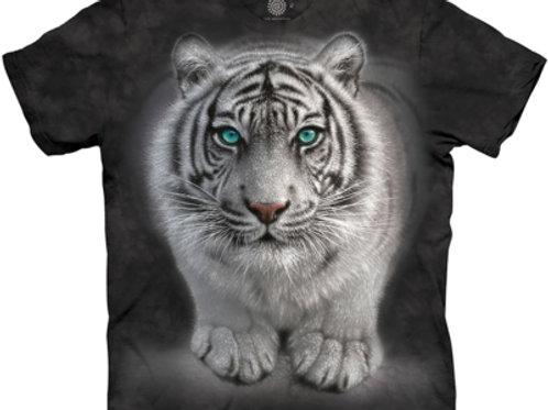 Tiger - Wilde Absichte