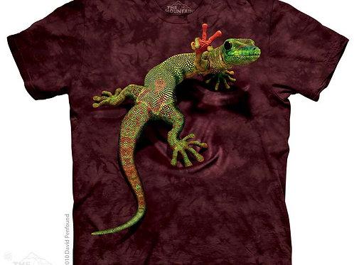Gecko mit Friedenszeichen
