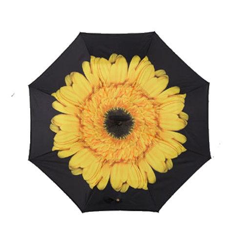 Invertierter Regenschirm, Sonnenblume