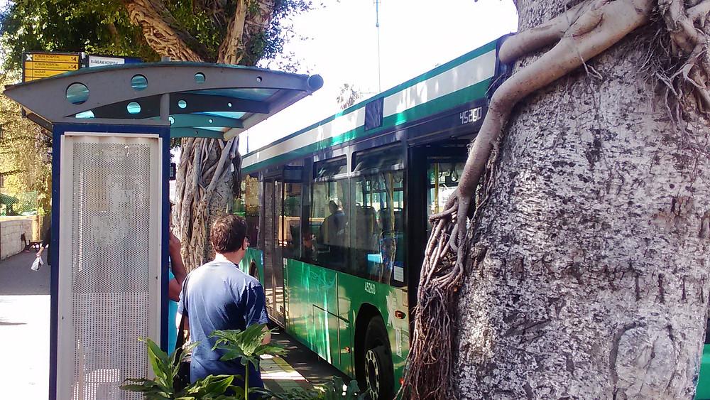 סקר נוסעים באוטובוס