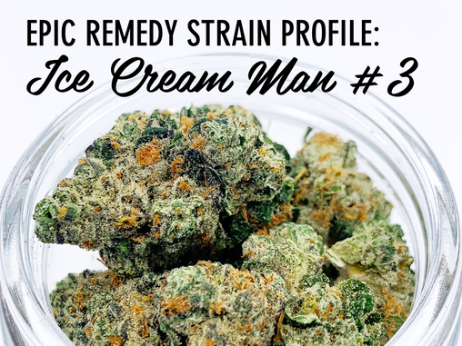 Epic Remedy Strain Profile - Ice Cream Man #3