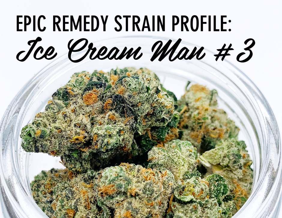 Ice Cream Man #3 Strain Profile and Review by The Epic Remedy