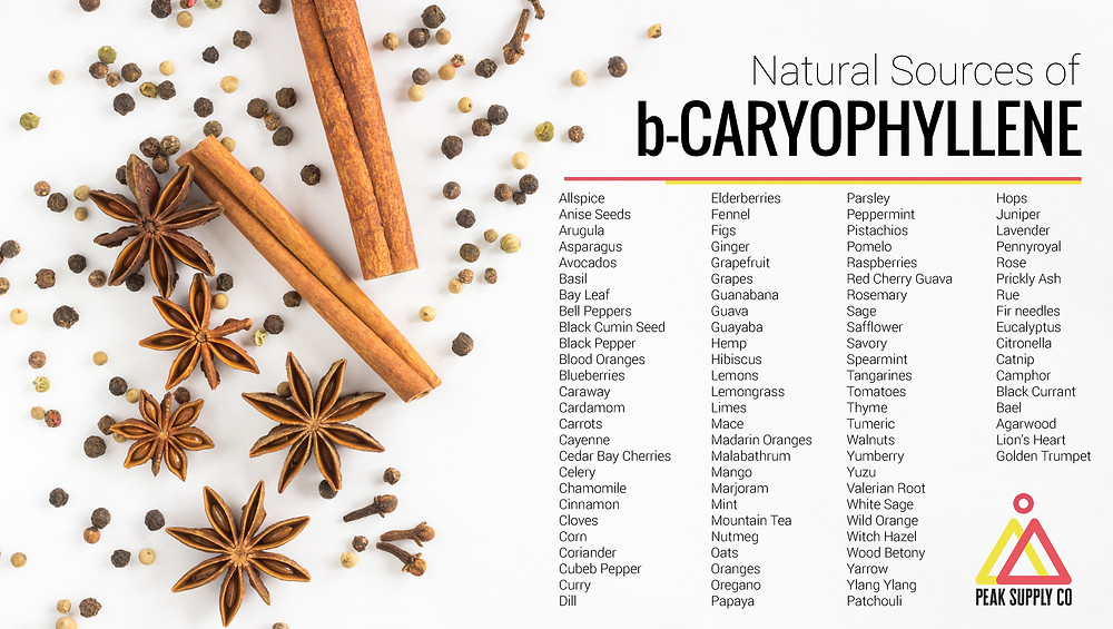 Natural Sources of b-Caryophyllene Terpene Isolates