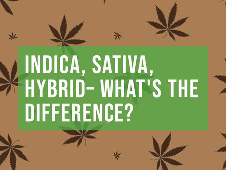 Indica, Sativa, Hybrid — What's The Difference?