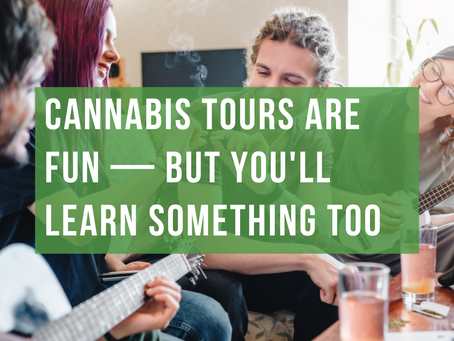 Cannabis Tours Are Fun — But You'll Learn Something Too