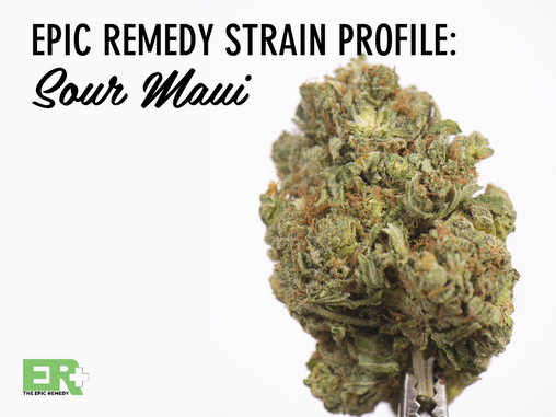 Epic Remedy Strain Profile: Sour Maui