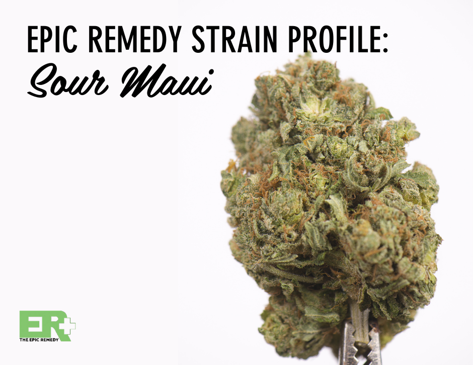 sour maui strain profile and review by the epic remedy