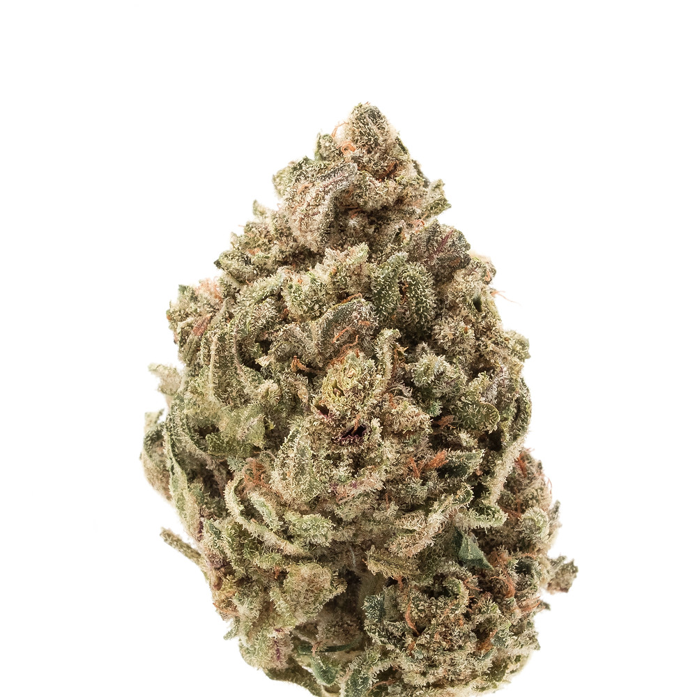 critical widow strain profile and review by the epic remedy, best colorado springs dispensaries