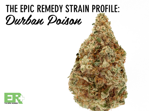 Epic Remedy Strain Profile: Durban Poison
