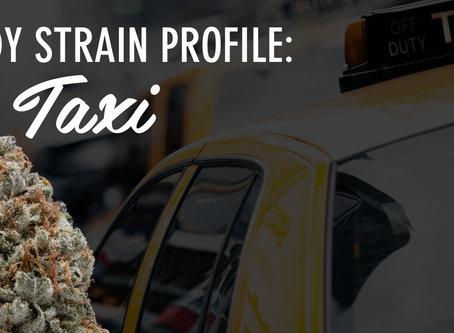 Epic Remedy Strain Profile: Dirty Taxi