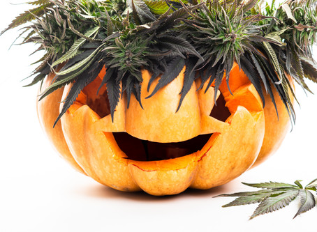 5 Spooky Strains To Get You Ready for Halloween